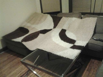 Kris' sofa and rug